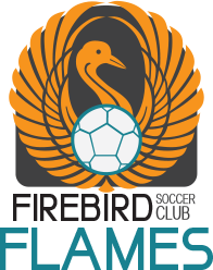 firebird soccer flames club team logo variation