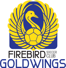 firebird soccer goldwings club team logo variation