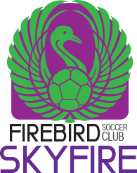 firebird soccer skyfire club team logo variation