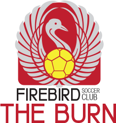 firebird soccer the burn club team logo variation
